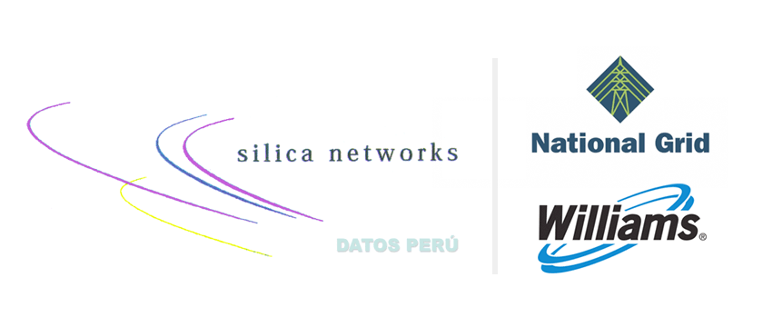 silica-networks