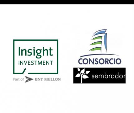 Insight logos para webpage 3